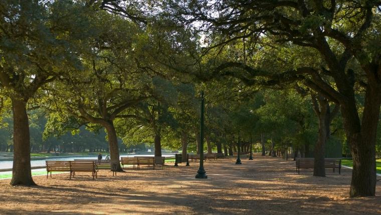 美国赫尔曼公园外部小路实景图-美国赫尔曼公园第7张图片