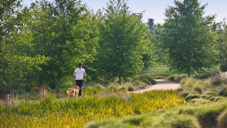 美国杰弗里公共公园的道路景观外-美国杰弗里公共公园的道路景观第6张图片