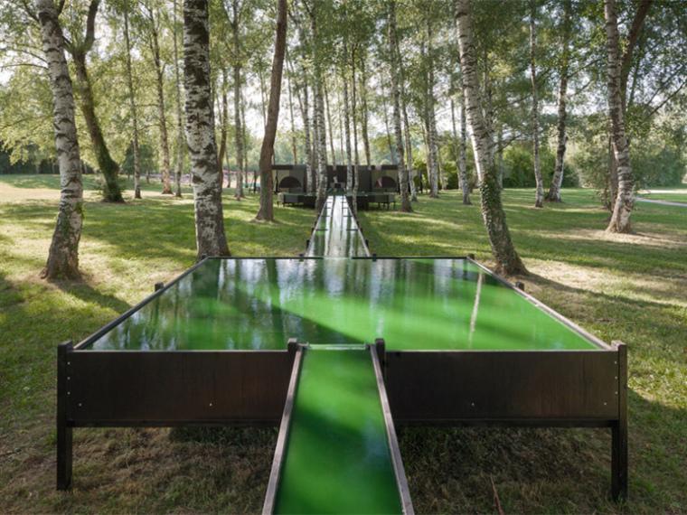 日内瓦的螺旋藻喷泉景观