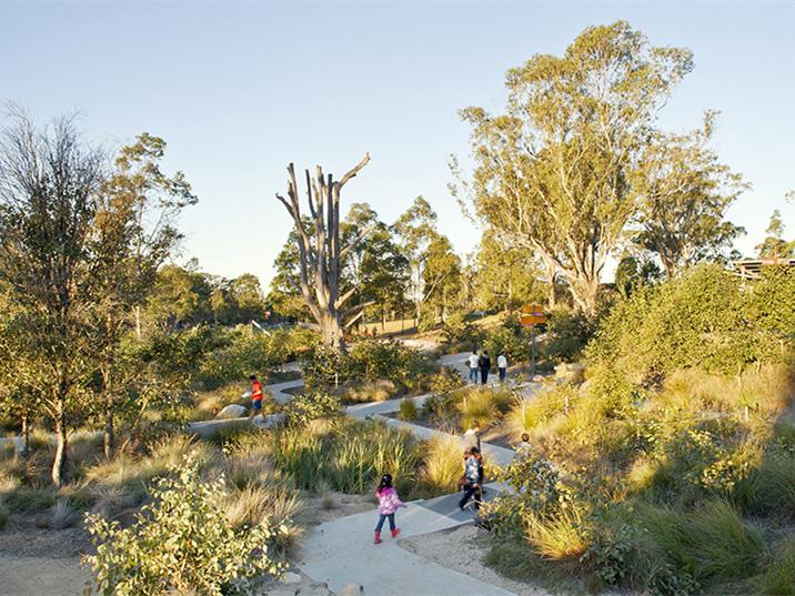 澳大利亚Lizard Log公园绿地