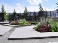 德国极简主义庭院花园