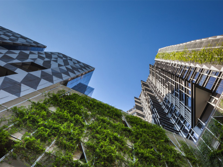 泰国城市绿洲景观