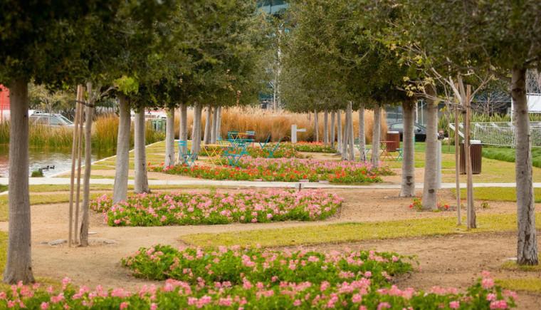 美国洛杉矶西海岸中央公园景观外-美国洛杉矶西海岸中央公园景观第8张图片