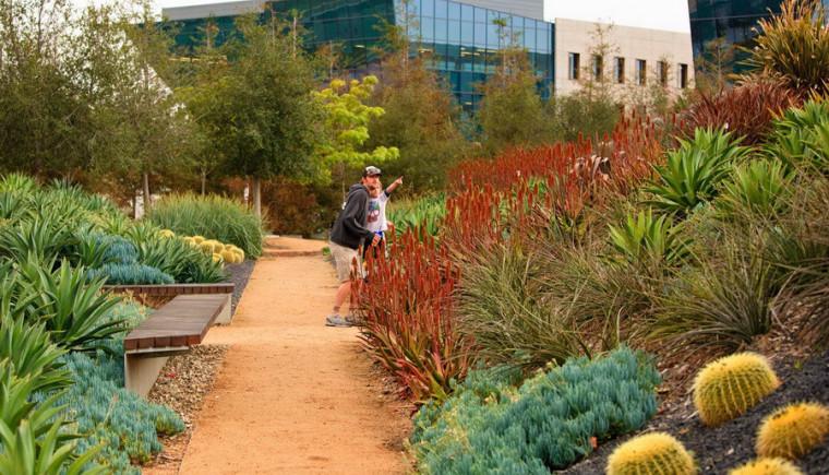 美国洛杉矶西海岸中央公园景观外-美国洛杉矶西海岸中央公园景观第4张图片