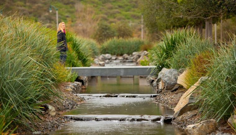 美国洛杉矶西海岸中央公园景观外-美国洛杉矶西海岸中央公园景观第13张图片
