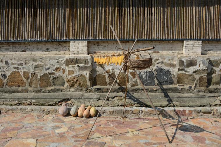 信阳粮油博物馆及村民活动中心外-信阳粮油博物馆及村民活动中心第5张图片