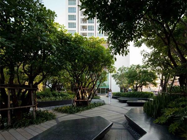 泰国花园公寓