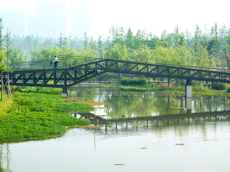 宁波生态走廊修复棕地项目