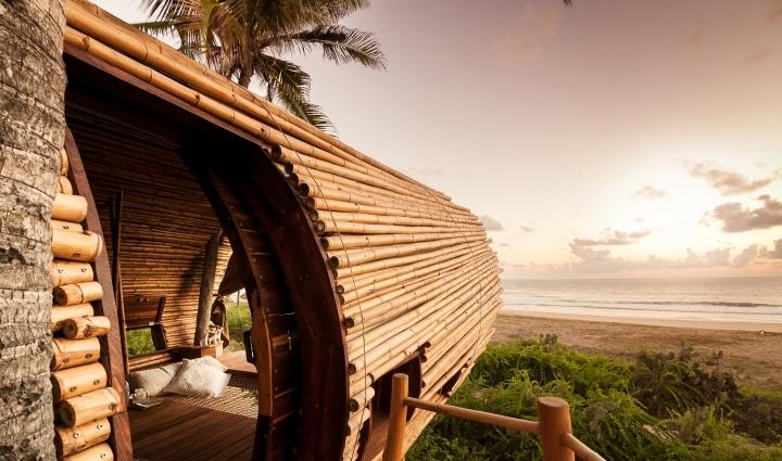 Playa环保精品酒店Treehouse树屋-Playa环保精品酒店Treehouse树屋套房第8张图片