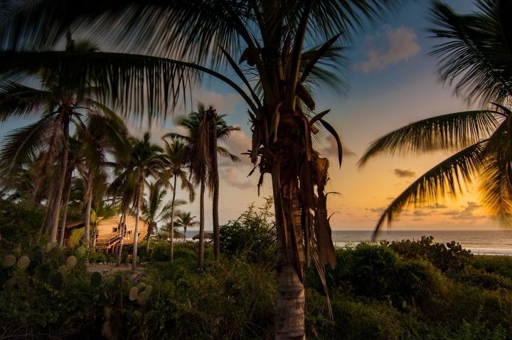 Playa环保精品酒店Treehouse树屋-Playa环保精品酒店Treehouse树屋套房第12张图片