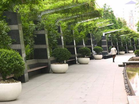 银公寓住宅花园