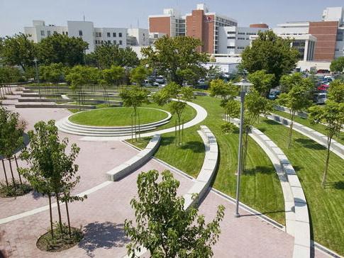 加州大学医学中心