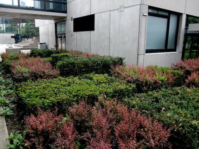 工业学校花园