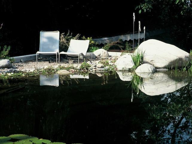 生态池塘之二