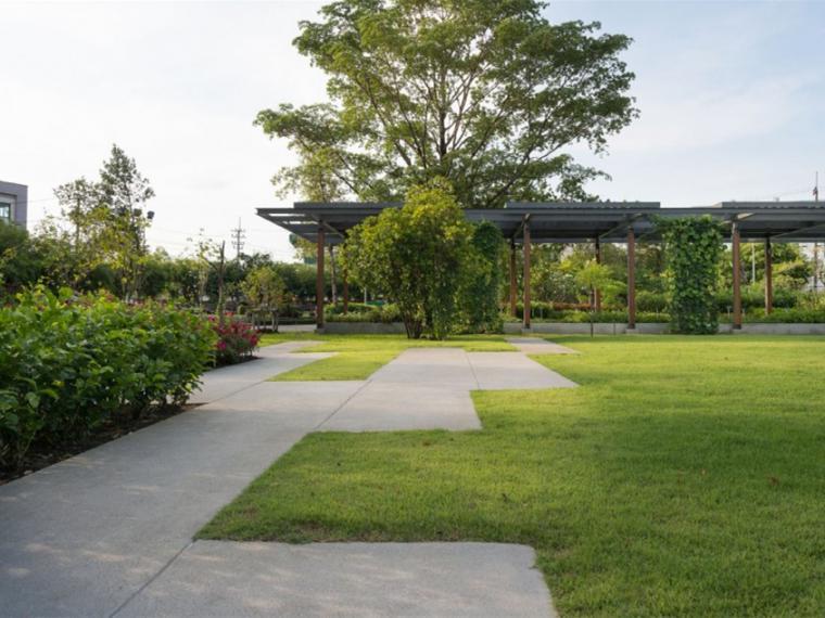 泰国药用植物园景观
