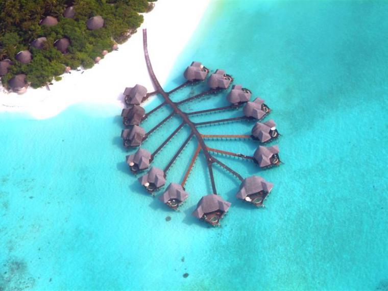 马尔代夫可可椰子酒店