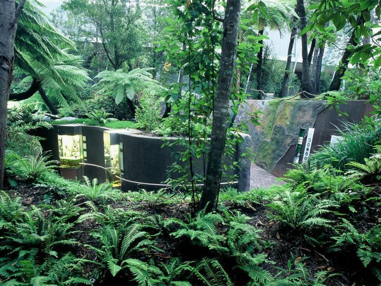 澳大利亚森林展馆