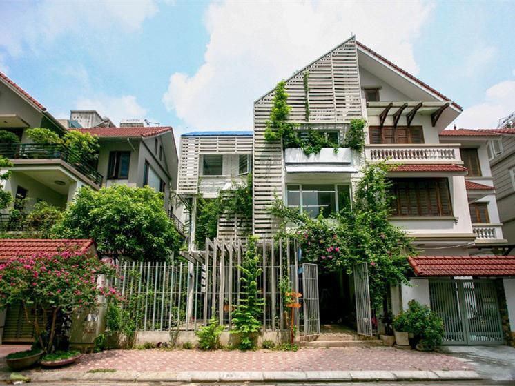 越南住宅改造的生态办公空间
