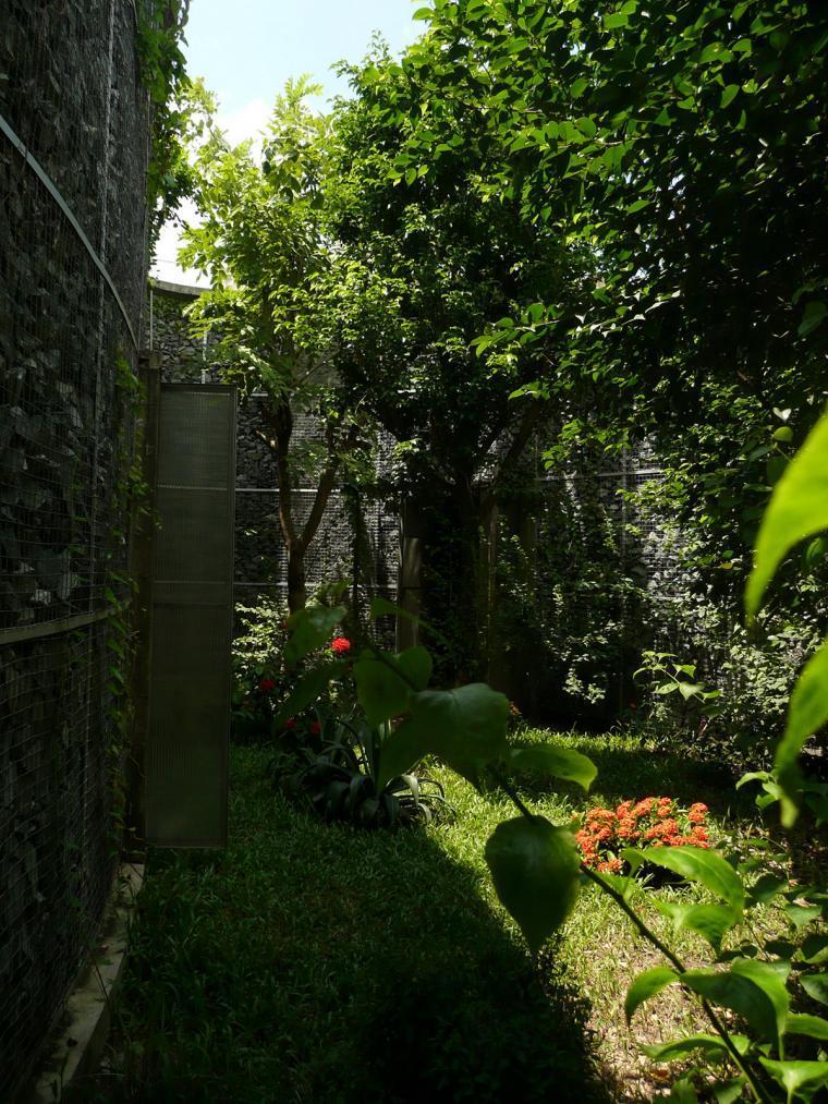 越南超原生态的建筑工作室外部实-越南超原生态的建筑工作室第3张图片