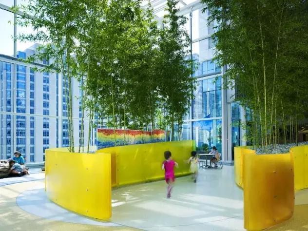 美国卢里儿童医院空中花园