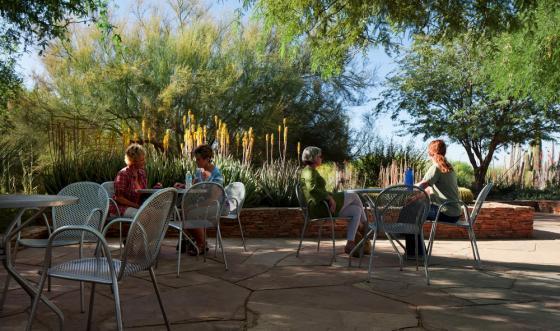 美国沙漠植物园外部实景图-美国沙漠植物园第3张图片