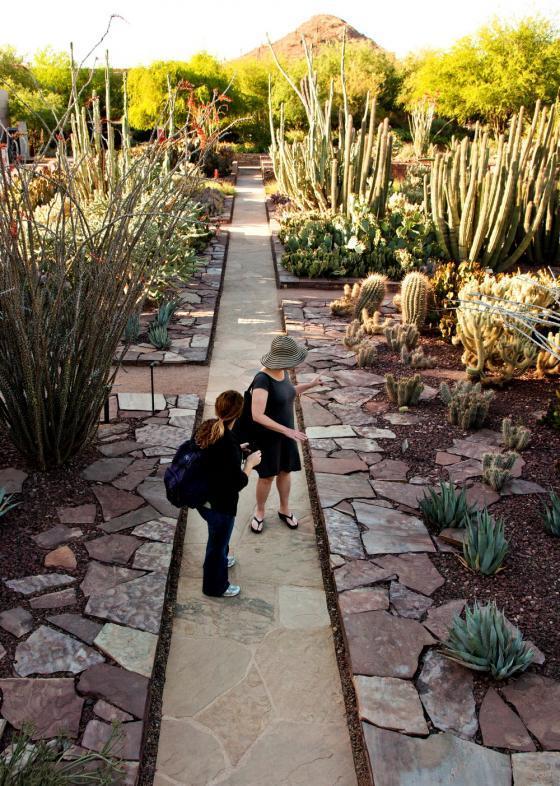 美国沙漠植物园外部实景图-美国沙漠植物园第8张图片