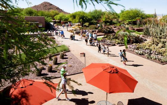美国沙漠植物园外部实景图-美国沙漠植物园第9张图片