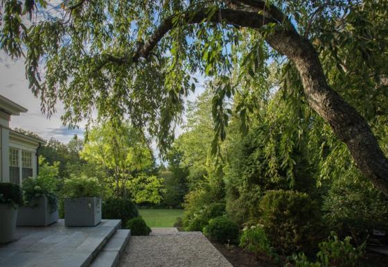 英国Chestnut山地花园外部实景图-英国Chestnut山地花园第4张图片