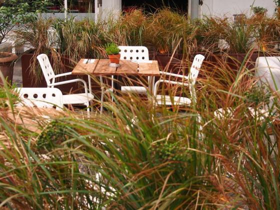英国Kings街道咖啡馆庭院改造外部-英国Kings街道咖啡馆庭院改造第5张图片