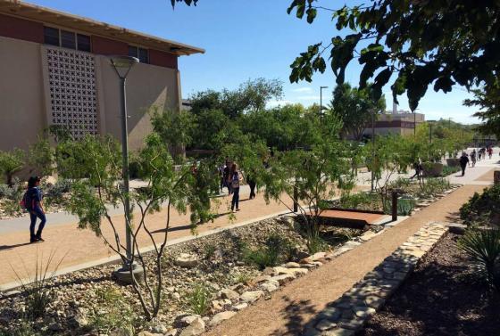 美国德克萨斯大学ElPaso校区世纪广场-美国德克萨斯大学El Paso校区世纪-美国德克萨斯大学El Paso校区世纪广场第4张图片