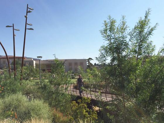 美国德克萨斯大学ElPaso校区世纪广场-美国德克萨斯大学El Paso校区世纪-美国德克萨斯大学El Paso校区世纪广场第7张图片