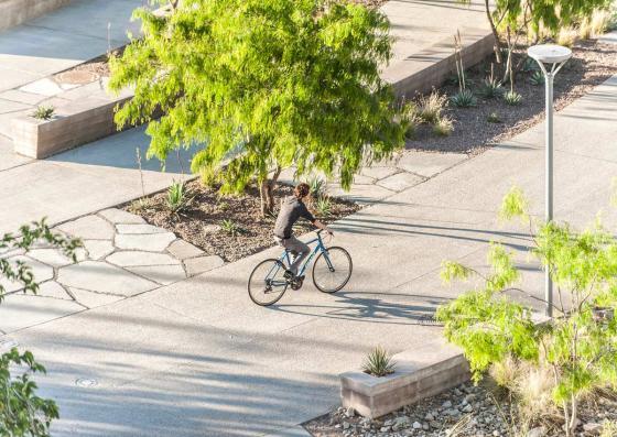 美国德克萨斯大学ElPaso校区世纪广场-美国德克萨斯大学El Paso校区世纪-美国德克萨斯大学El Paso校区世纪广场第10张图片