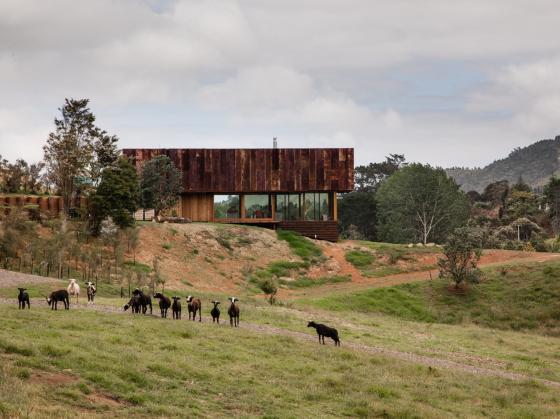 新西兰考埃朗格谷住宅第1张图片