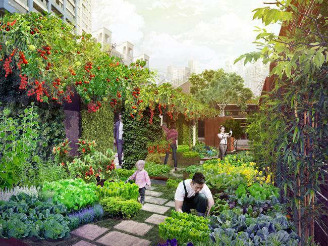 上海农场总体规划