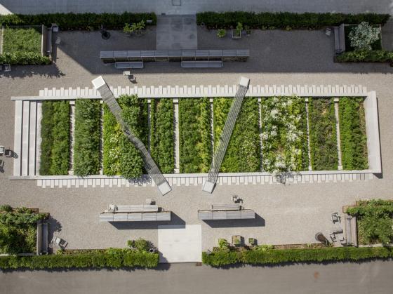 瑞士诺华制药公司药用植物园第1张图片