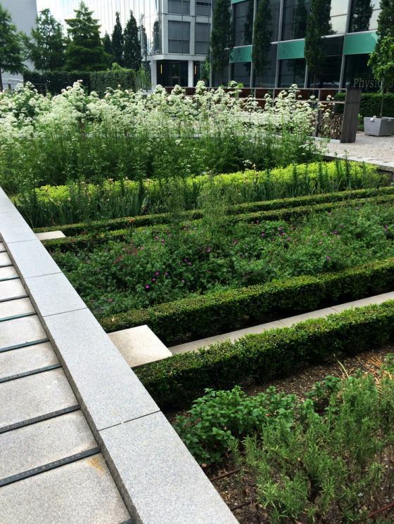 瑞士诺华制药公司药用植物园外部-瑞士诺华制药公司药用植物园第5张图片