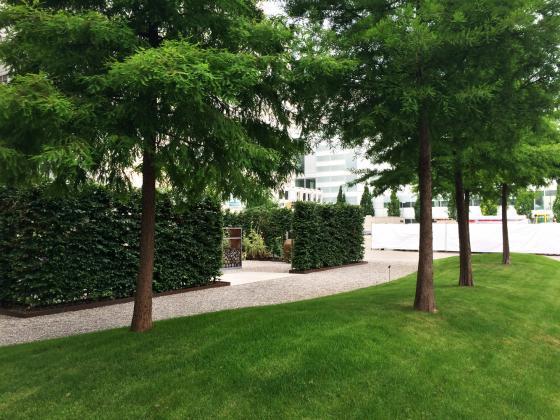 瑞士诺华制药公司药用植物园外部-瑞士诺华制药公司药用植物园第7张图片