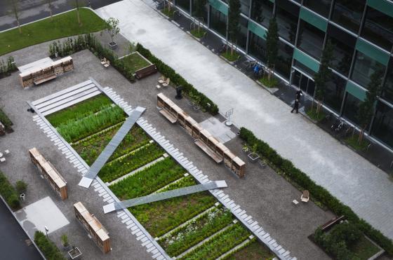 瑞士诺华制药公司药用植物园外部-瑞士诺华制药公司药用植物园第12张图片