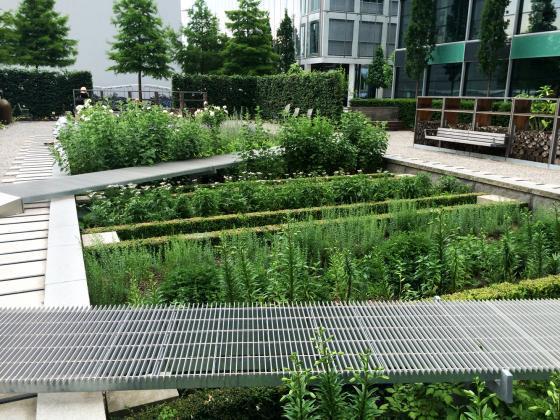 瑞士诺华制药公司药用植物园外部-瑞士诺华制药公司药用植物园第15张图片