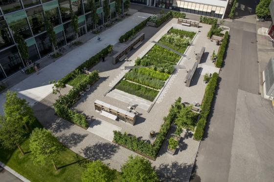 瑞士诺华制药公司药用植物园外部-瑞士诺华制药公司药用植物园第19张图片