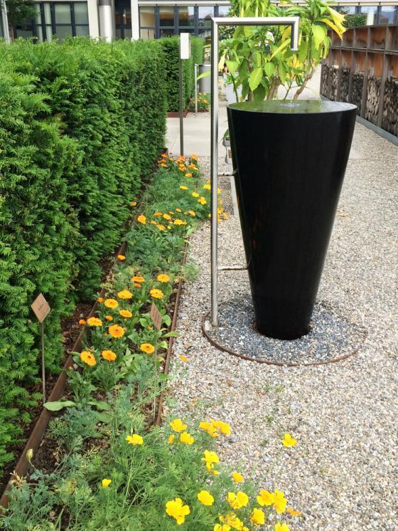 瑞士诺华制药公司药用植物园外部-瑞士诺华制药公司药用植物园第24张图片