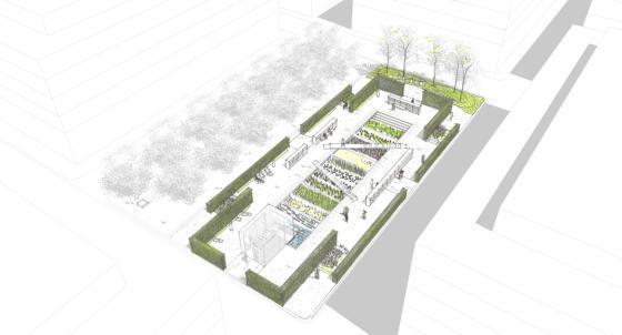 瑞士诺华制药公司药用植物园效果-瑞士诺华制药公司药用植物园第30张图片