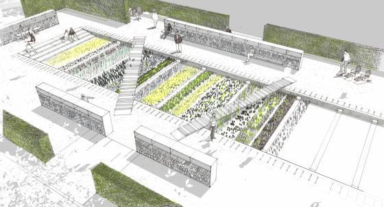 瑞士诺华制药公司药用植物园效果-瑞士诺华制药公司药用植物园第33张图片