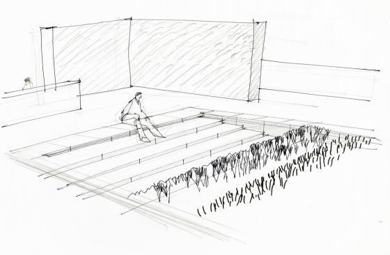 瑞士诺华制药公司药用植物园草图-瑞士诺华制药公司药用植物园第35张图片