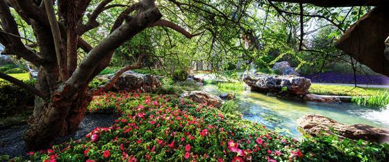 北京鲁能•优山美地D区示范区景观-北京鲁能•优山美地D区示范区景观第10张图片