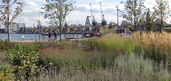 英国伦敦水晶大楼外部实景图-英国伦敦水晶大楼第2张图片