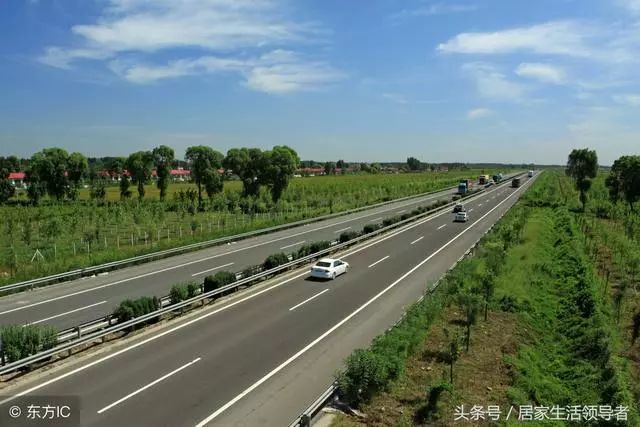 市政道路绿化工程施工具体方案和措施_6