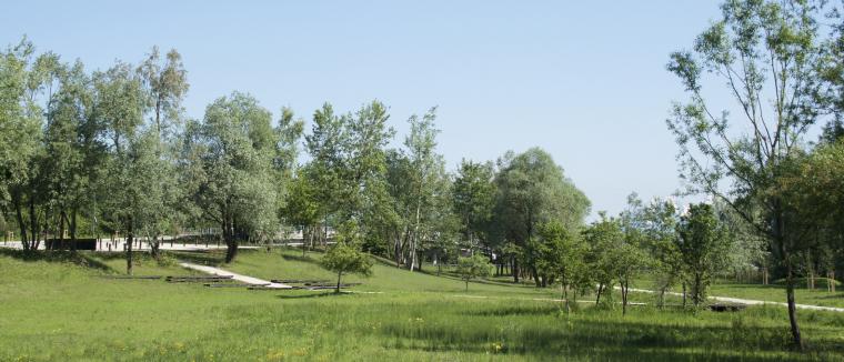 斯洛文尼亚首都的市镇公园-9