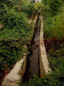 如何利用排水沟做好环保