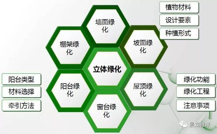 干货|立体绿化的分类与营造方式